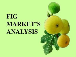 FIG  MARKET S ANALYSIS