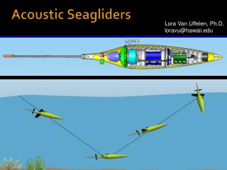 Acoustic Seagliders