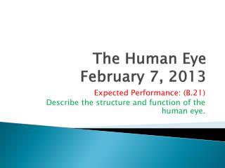 The Human Eye February 7, 2013