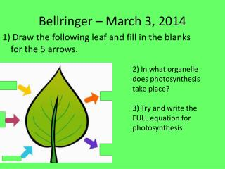 Bellringer  – March 3, 2014