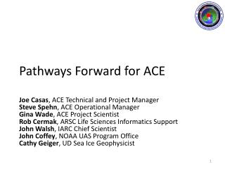 Pathways Forward for ACE