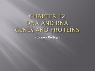 chapter 12 D NA and RNA  Genes and Proteins