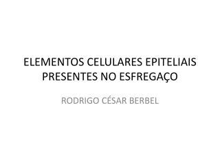 ELEMENTOS CELULARES EPITELIAIS PRESENTES NO ESFREGAÇO