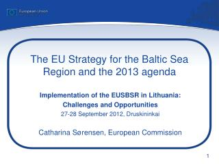 The EU Strategy for the Baltic Sea Region and the 2013 agenda