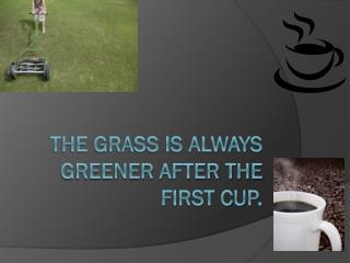 The grass is always greener after the first cup.