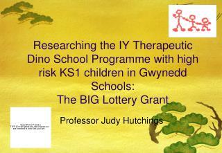Professor Judy Hutchings
