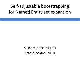 Self-adjustable bootstrapping for Named Entity set expansion