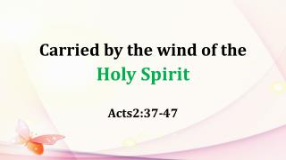 Carried by the wind of the  Holy Spirit
