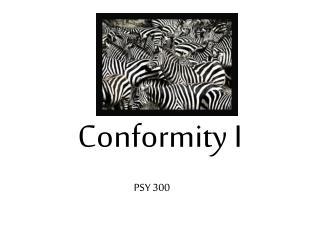 Conformity I