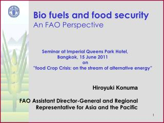 Bio fuels and food security An FAO Perspective