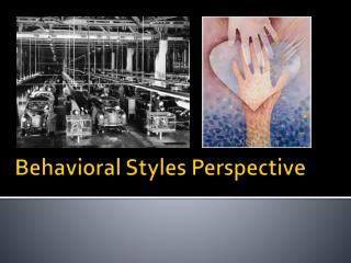 Behavioral Styles Perspective