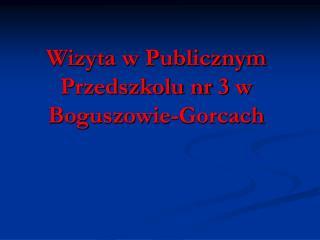 Wizyta w Publicznym Przedszkolu nr 3 w Boguszowie-Gorcach