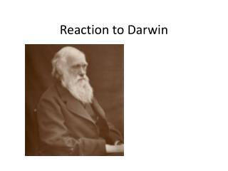 Reaction to Darwin