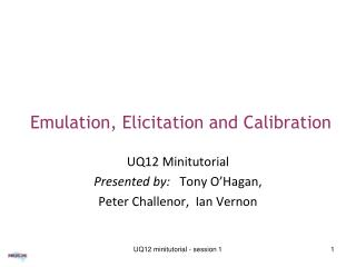 Emulation, Elicitation and Calibration