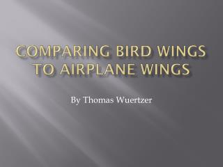 Comparing  bird wings to airplane wings