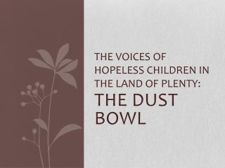 THE VOICES OF HOPELESS CHILDREN IN THE LAND OF PLENTY:
