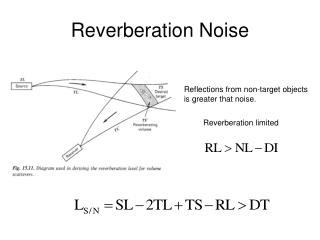 Reverberation Noise