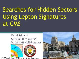 Searches for Hidden Sectors  Using Lepton Signatures    at  CMS
