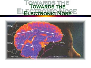 Towards the Electronic Nose