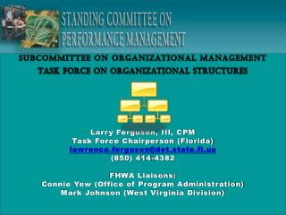 Subcommittee on Organizational Management Task force on organizational structures
