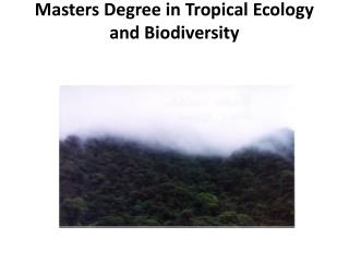 Masters Degree in Tropical Ecology and Biodiversity