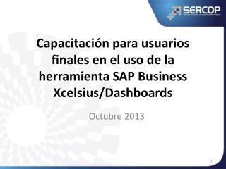 Capacitación para usuarios finales en el uso de la herramienta SAP Business  Xcelsius / Dashboards