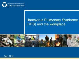 Hantavirus Pulmonary Syndrome HPS and the workplace