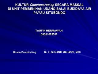 KULTUR  Chaetoceros sp  SECARA MASSAL  DI UNIT PEMBENIHAN UDANG BALAI BUDIDAYA AIR PAYAU SITUBONDO