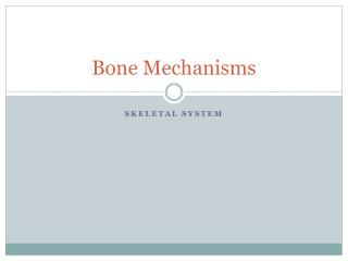 Bone Mechanisms