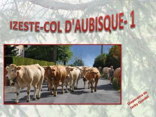 IZESTE-COL D'AUBISQUE- 1