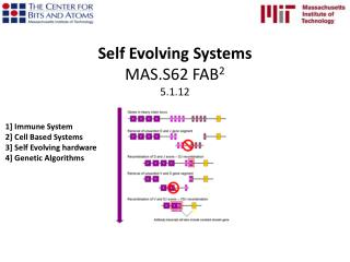 Self Evolving Systems MAS.S62 FAB 2 5.1.12