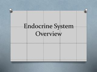 Endocrine System Overview