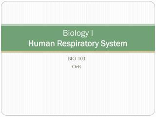 Biology I Human Respiratory System