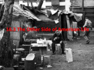 16.3 The Other Side of American Life