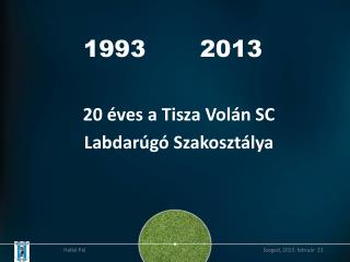 1993       2013