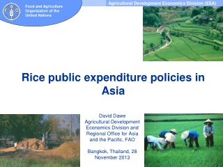 Rice public expenditure policies in Asia