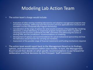 Modeling Lab Action Team