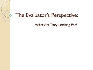 The Evaluator's Perspective: