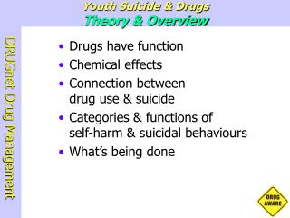 Youth Suicide  Drugs Theory  Overview