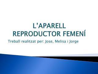 L'APARELL REPRODUCTOR FEMENÍ