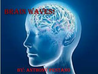 Brain waves!