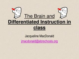 The Brain and  Differentiated Instruction in class