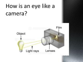 How is an eye like a camera?