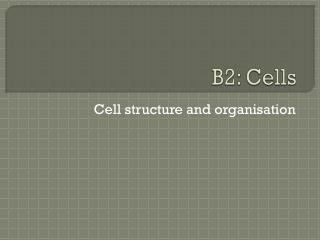 B2: Cells