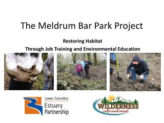 The Meldrum Bar Park Project