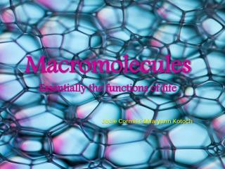 Macromolecules Essentially the functions of life Jocie Cormier &Maryann Kotoch