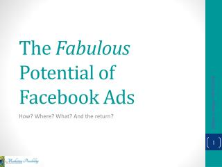 The  Fabulous  Potential of Facebook Ads