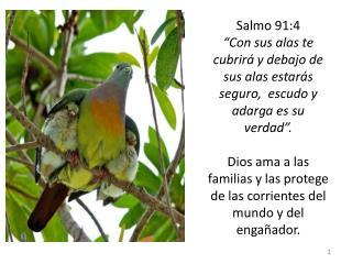 ADVERTENCIAS BÍBLICAS