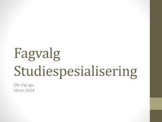 Fagvalg Studiespesialisering