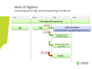 Veien til fagbrev  v/avdelingssjef for fag- og yrkesopplæring Turid Borud